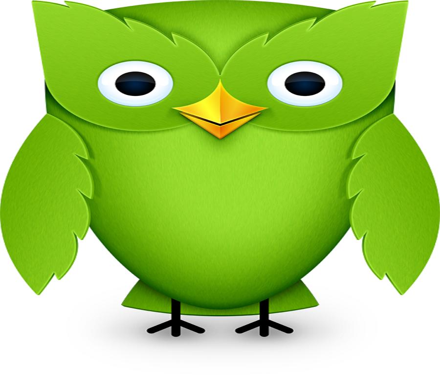 5 Gründe, warum der Online-Sprachkurs Duolingo das Sprachenlernen revolutioniert