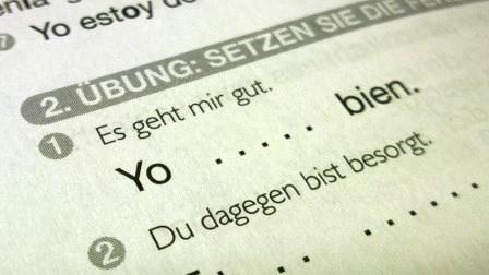Sinngemäße vs. wörtliche Übersetzung