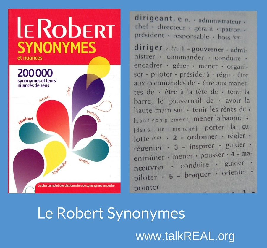 Le Robert synonymes mit Musterseite