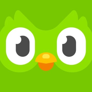 Duolingo Logo Testbild